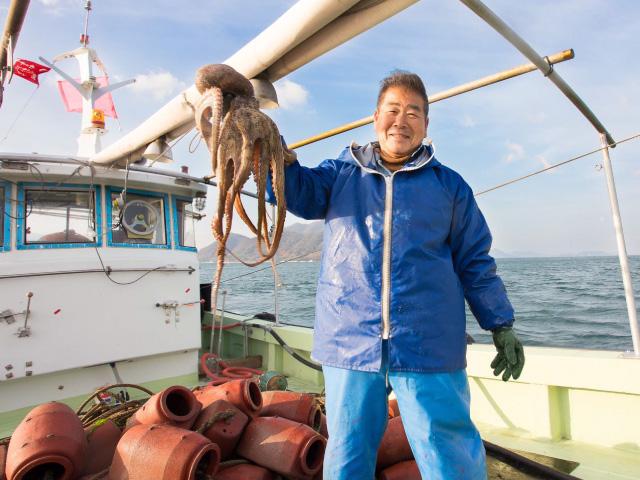 三原の漁師は代々、タコと共存してきた