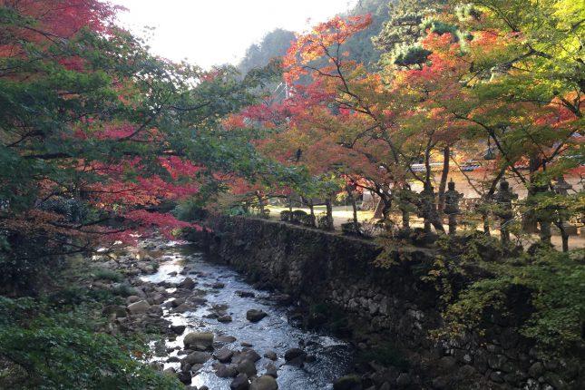 紅葉の佛通寺