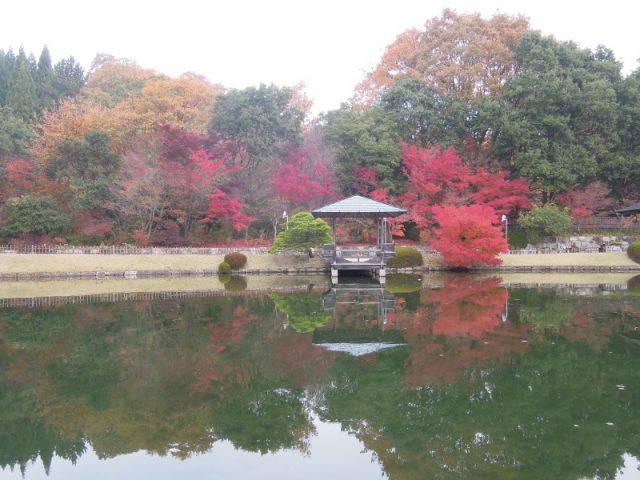 三景園11月27日現在