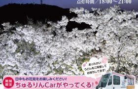 筆影山夜桜ライトアップ&竜王山駐車場での物販