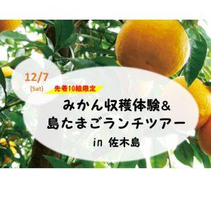 みかん収穫体験&島たまごランチツアー in 佐木島