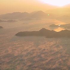 黄金の海霧