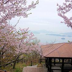筆影山より望む桜と瀬戸内海