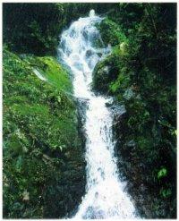 宗郷谷 里山の自然
