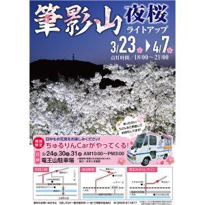 ◎筆影山夜桜ライトアップと竜王山駐車場での物販